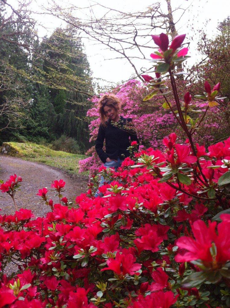 Garinish Gardens, Glengariff